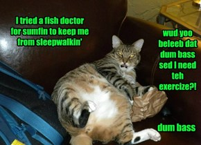 Cat Doctor Sed I Wuz Fat