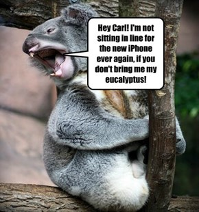 Hey Carl! I'm not sitting in line for the new iPhone ever again, if you don't bring me my eucalyptus!