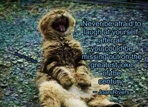 Never be afraid to    laugh at yourself,    after all,    you could be      missing out on the    greatest joke     of the    century.