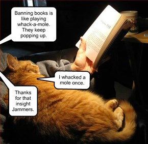 Banning books is like playing whack-a-mole.  They keep popping up.