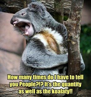 Save The Koalas!!