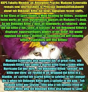 MORE UNKNOWN KITTIE REVELATIONS!! Big powers of teh mind an' helpin' out ovver kitties, espeshully Ittie Bitties!  Madame Esmeralda informs Principal Dontebanfinkaboutit..