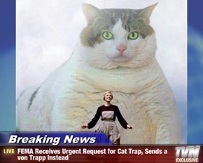Breaking News - FEMA Receives Urgent Request for Cat Trap, Sends a von Trapp Instead