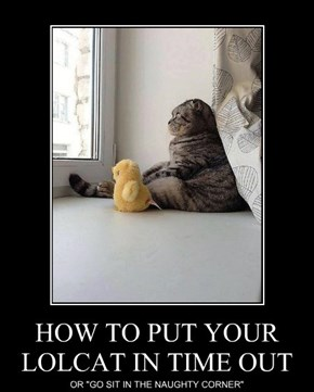 HOW TO PUT YOUR LOLCAT IN TIME OUT