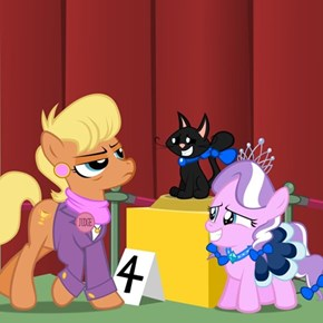 Diamond at the Cat Show