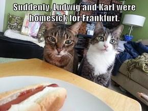 Suddenly, Ludwig and Karl were homesick for Frankfurt.