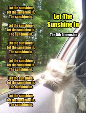 Let the sunshine,  Let the sunshine in,  The sunshine in,   Let the sunshine,  Let the sunshine in,  The sunshine in,   Let the sunshine,  Let the sunshine in,  The sunshine in,   Let the sunshine,  Let the sunshine in,  The sunshine in,   Let the sunshin