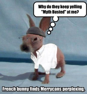 French Bunny has a Perplexed.