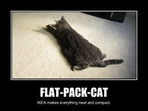 FLAT-PACK-CAT