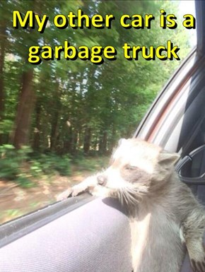 My other car is a garbage truck