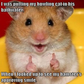 I was putting my howling cat in his bathwater,  When I looked up to see my hamster's approving smile.