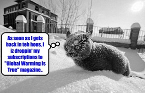 Kittie comes face to face wiff realities..