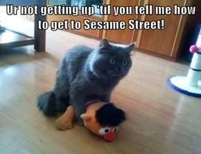 Ur not getting up 'til you tell me how to get to Sesame Street!