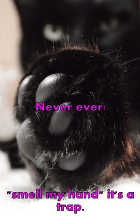 "Never ever! ""smell my hand"" it's a trap."