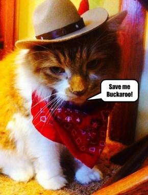 Save me Buckaroo!