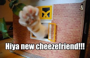 Hiya new cheezefriend!!!