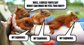 TALKIN' BOUT MY SQUIRREL