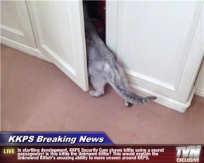 KKPS Breaking News - In startling development, KKPS Security Cam shows kittie using a secret passageway! Is this kittie the Unknown Kittie? This would explain the Unknowed Kitteh's amazing ability to move unseen around KKPS.