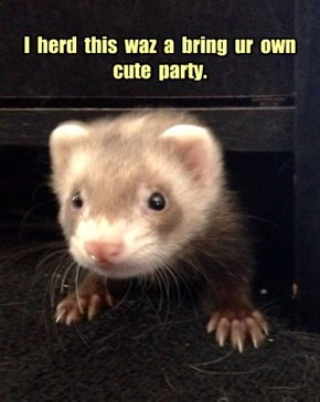 I  herd  this  waz  a  bring  ur  own  cute  party.