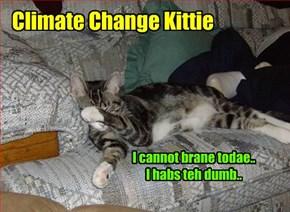 Climate Change Kittie