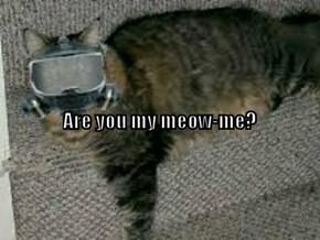 Meow-me.......
