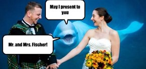 Seaworld now has complete wedding packages