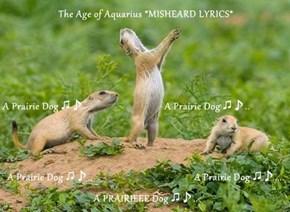 The Age of Aquarius *MISHEARD LYRICS* A Prairie Dog ♫♪                                A Prairie Dog ♫♪.. A Prairie Dog ♫♪..                                        A Prairie Dog ♫♪....   A PRAIRIEEE Dog ♫♪..