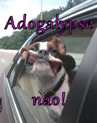 Adogalypse  nao!