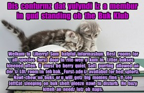 Offishul JeffCatsBookClub Memburship Kard for yulyndi