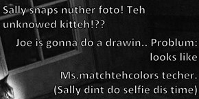 Sally snaps nuther foto! Teh unknowed kitteh!?? Joe is gonna do a drawin.. Problum: looks like                                                                                                                         Ms.matchtehcolors techer.