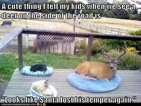 "A cute thing I tell my kids when we see a deer on the side of the road is  ""Looks like Santa lost his temper again."""