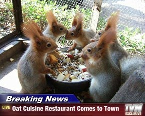 Breaking News - Oat Cuisine Restaurant Comes to Town