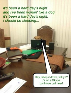 """Working like a dog..."" It doesn't mean what it used to..."