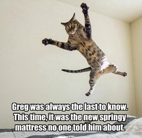 Greg was always the last to know. This time, it was the new springy mattress no one told him about.