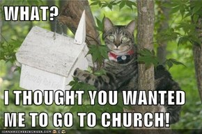 WHAT?  I THOUGHT YOU WANTED ME TO GO TO CHURCH!