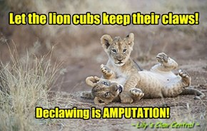 DO Not Declaw the Lion Cubs