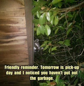 Friendly  reminder.  Tomorrow  is  pick-up day  and  I  noticed  you  haven't  put  out the  garbage.