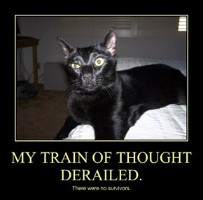 MY TRAIN OF THOUGHT DERAILED.