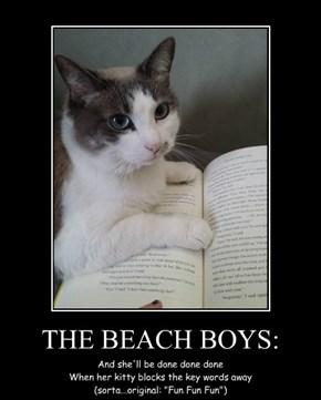 THE BEACH BOYS: