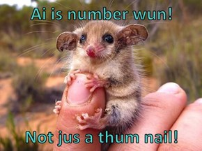 Ai is number wun!   Not jus a thum nail!