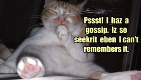 Pssst!  I  haz  a  gossip.  Iz  so  seekrit  eben  I can't remembers it.