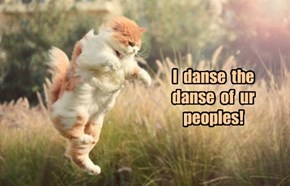 Dances with Grasshoppers