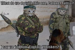 What do we do with this one, Colonel Tuftsy?  I say we jail him, Captain Whiskers!