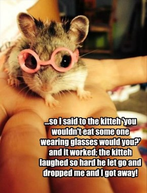 ...so I said to the kitteh 'you wouldn't eat some one wearing glasses would you?' and it worked; the kitteh laughed so hard he let go and dropped me and I got away!
