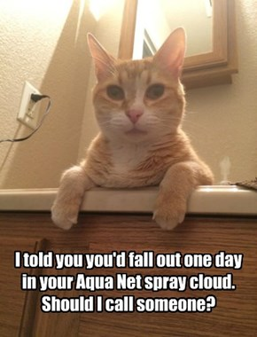 I told you you'd fall out one day in your Aqua Net spray cloud. Should I call someone?