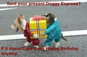 Sent your present Doggy Express?  If it doesn't get there Happy Birthday anyway.