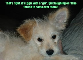 "That's right, it's Eggrr with a ""grr"". Quit laughing or I'll be forced to come over there!!"