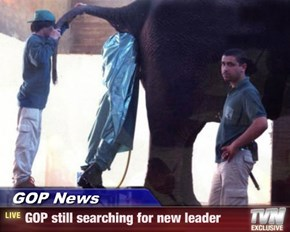 GOP News - GOP still searching for new leader