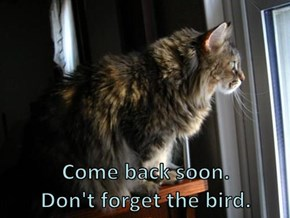 Come back soon.                                                   Don't forget the bird.