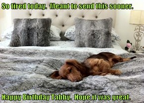 So tired today.  Meant to send this sooner.  Happy Birthday Tabby.  Hope it was great.